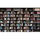 Φωτοταπετσαρία Βιβλιοθήκη 3 3D L