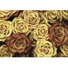 Φωτοταπετσαρία Vintage τριαντάφυλλα 3D L