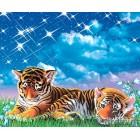 φωτογραφία Ταπετσαρία τοίχου Τίγρης