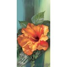 φωτογραφία Ταπετσαρία τοίχου τριαντάφυλλο Chinezesc