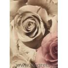 Ταπετσαρία τοίχου PVC Τριαντάφυλλα κλουβί Μπεζ