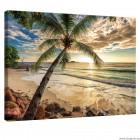 Εικόνα Canvas Ηλιοβασίλεμα στις Μπαχάμες