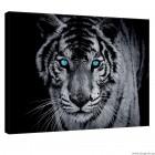 Εικόνα Canvas Τίγρη 1 3D