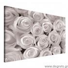 Εικόνα Canvas Μπουκέτο λευκά τριαντάφυλλα