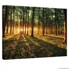 Εικόνα Canvas Δάσος 1 L