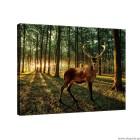 Εικόνα Canvas Ελάφι στο δάσος L