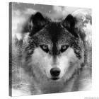 Εικόνα Canvas Λύκος M