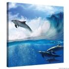 Εικόνα Canvas Δελφίνια στη θάλασσα