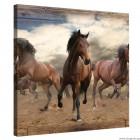 Εικόνα Canvas Άλογα σε  καλπασμό