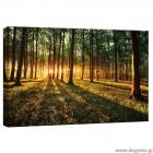 Εικόνα Canvas Δάσος 1 S