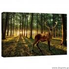 Εικόνα Canvas Ελάφι στο δάσος S