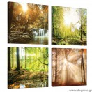 Σετ Εικόνα Canvas 4 κομμάτια Δασικά τοπία 1