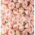 Φωτοταπετσαρία Μπουκέτο από τριαντάφυλλα 2